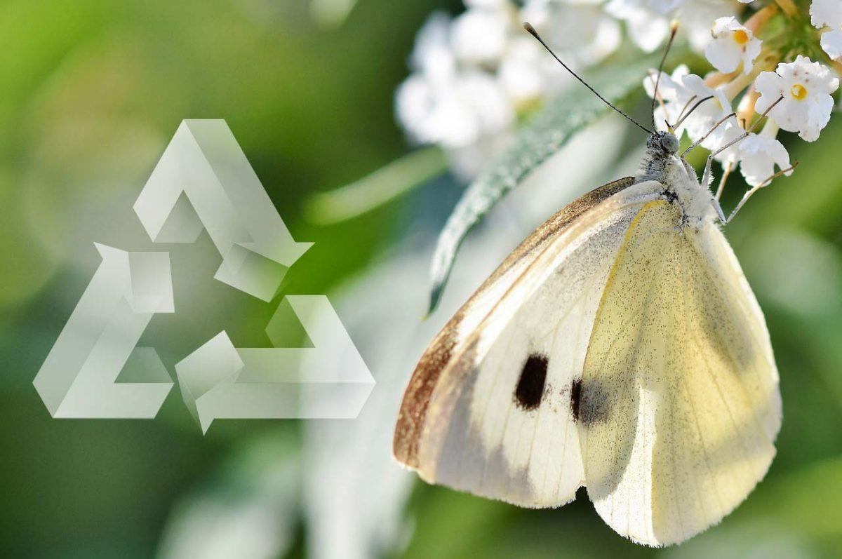 free-plastics-recycling-programme